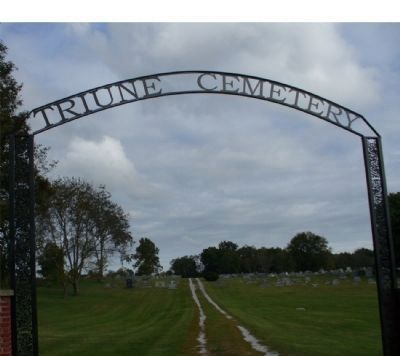 Triune Cemetery Gate image. Click for full size.