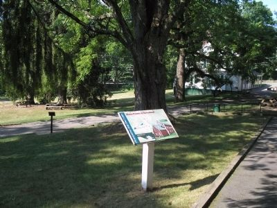 Marker at Historic Speedwell image. Click for full size.