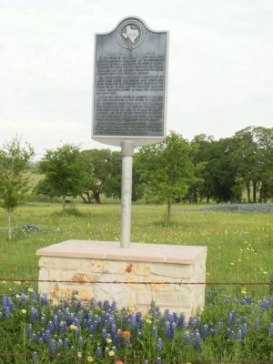 Waul's Texas Legion Campsite Marker with bluebonnets image. Click for full size.
