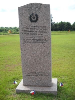 Rear of Texas Marker image. Click for full size.