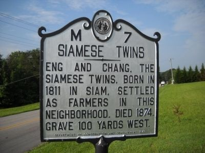 Siamese Twins Marker image. Click for full size.