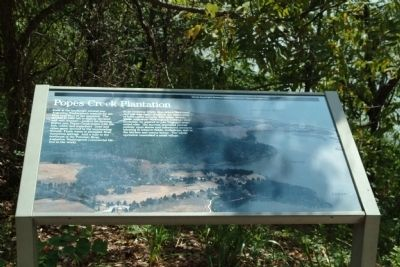 Popes Creek Plantation Marker image. Click for full size.