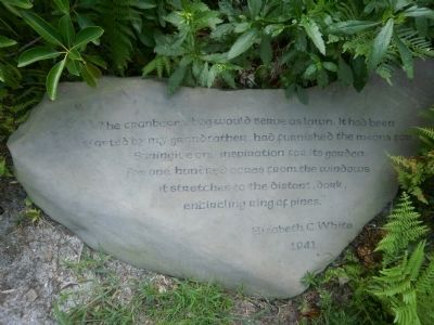 Commemorative stone located behind Suningive image. Click for full size.