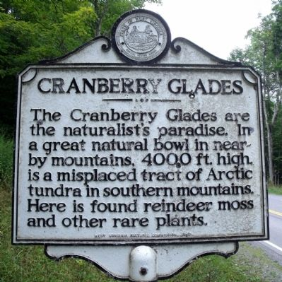 Cranberry Glades Marker image. Click for full size.