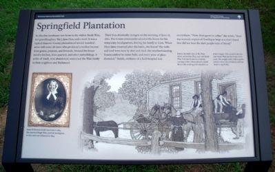 Springfield Plantation Marker image. Click for full size.
