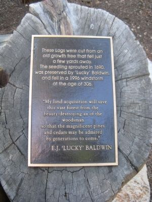 "Plaque Located to the Right of ""Tahoe Heritage Foundation"" Log image. Click for full size."