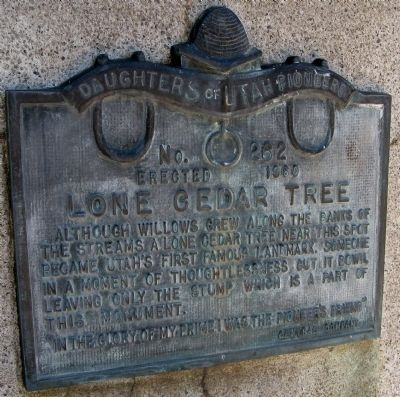 Lone Cedar Tree Marker image. Click for full size.