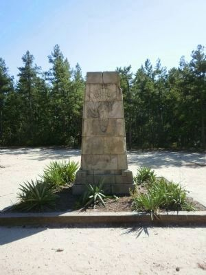 Carranza Memorial image. Click for full size.