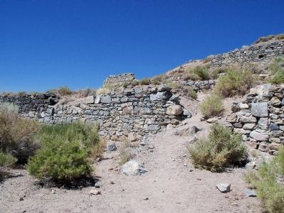 Palmetto Ruins image. Click for full size.