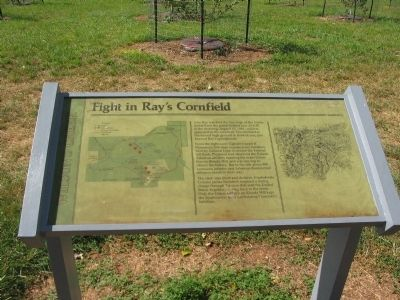 Fight in Ray's Cornfield Marker image. Click for full size.