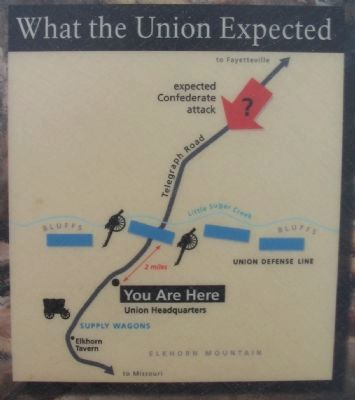 What the Union Expected image. Click for full size.