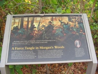 A Fierce Tangle in Morgan's Woods Marker image. Click for full size.