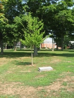 Site of the Theodore Roosevelt Oak Marker image. Click for full size.