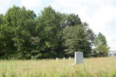 Battle of Dingles Mill Confederate and Union (distant) Marker image. Click for full size.