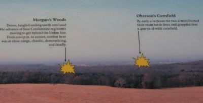 Notations for Morgan's Woods and Oberson's Fields image. Click for full size.