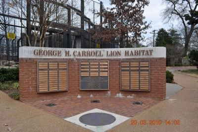 George H. Carroll Lion Habitat image. Click for full size.