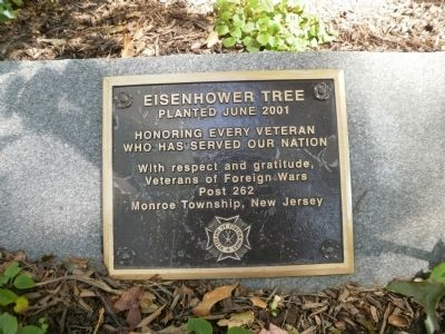 Eisenhower Tree Marker image. Click for full size.
