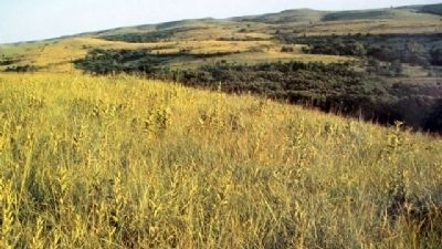 Konza Prairie Photo on Marker image. Click for full size.