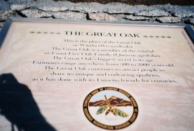 The Great Oak Marker image. Click for full size.