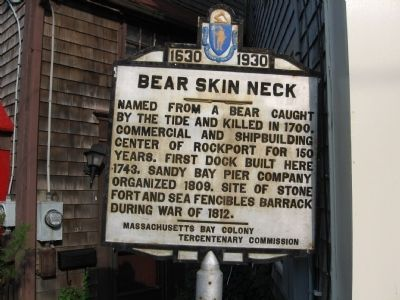 Bear Skin Neck Marker image. Click for full size.