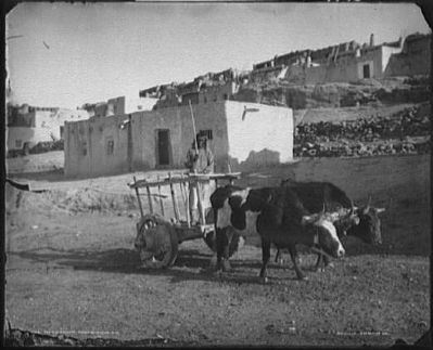 A Carreta at the Pueblo of Laguna image. Click for full size.
