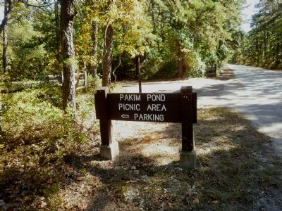 Pakim Pond sign leading to parking lot image. Click for full size.