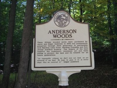 Anderson Woods Marker image. Click for full size.