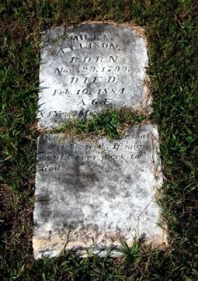 Original Miles Ellison Tombstone image. Click for full size.