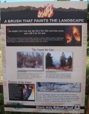 Jasper Fire Marker - A Brush that Paints the Landscape Panel image. Click for full size.