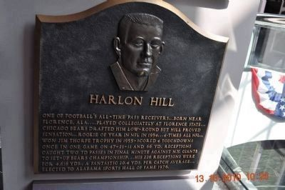 Harlon Hill Plaque -Birmingham at Sports Hall of Fame. image. Click for full size.