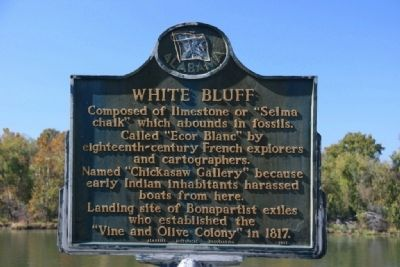 White Bluff Marker image. Click for full size.