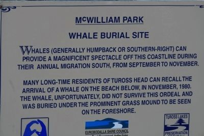 McWilliam Park Whale Burial Site Marker image. Click for full size.