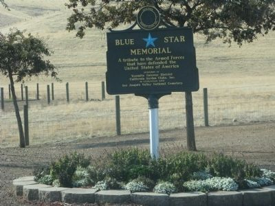 Blue Star Memorial Plaque image. Click for full size.