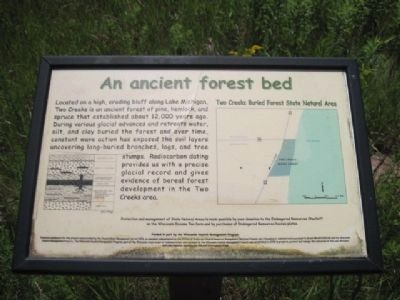 Two Creeks Buried Forest Marker image. Click for full size.