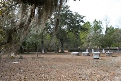 St. James Santee Parish Church Cemetery image. Click for full size.