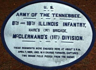 8th and 18th Illinois Infantry Marker image. Click for full size.
