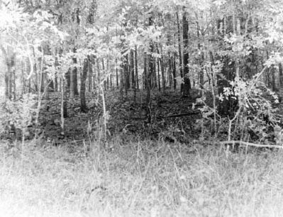 Fort Site image. Click for full size.