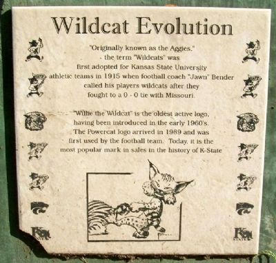 Wildcat Evolution Marker image. Click for full size.
