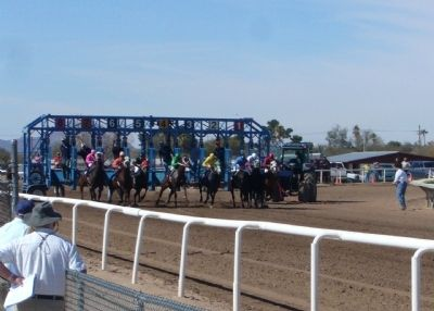 Starting gate at Rillito Race Track image. Click for full size.