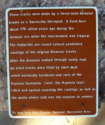 Saurischia Dinosaur Tracks Marker image. Click for full size.