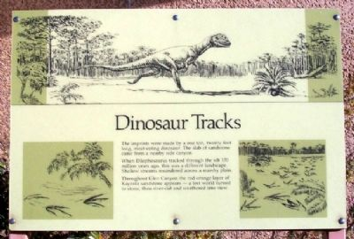 Dinosaur Tracks Marker image. Click for full size.