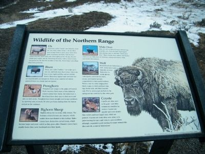 Wildlife of the Northern Range Marker image. Click for full size.