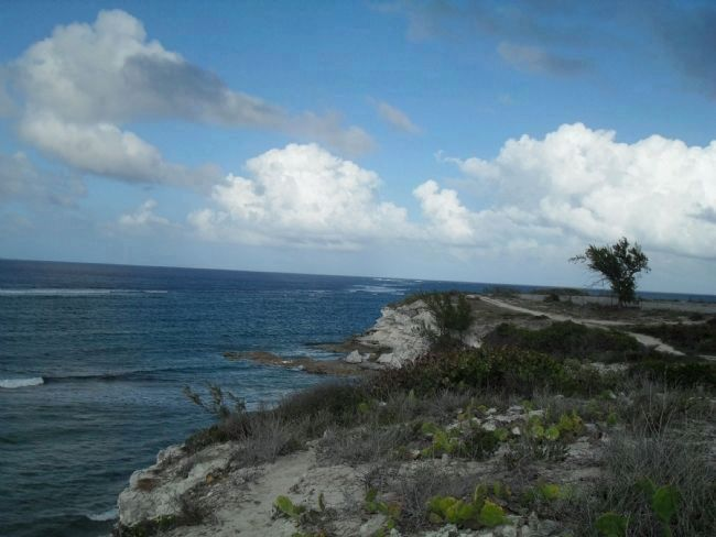 view of The Northeast Reef, looking northeast image. Click for full size.