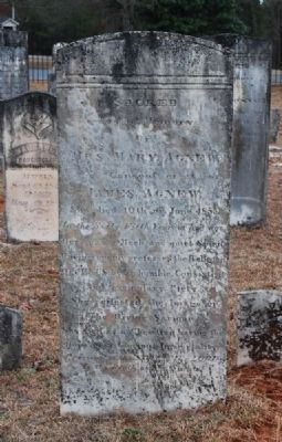 Mary Agnew Tombstone image. Click for full size.