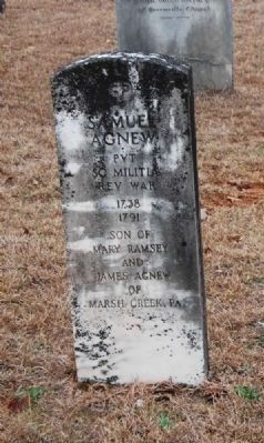 Samuel Agnew Tombstone image. Click for full size.