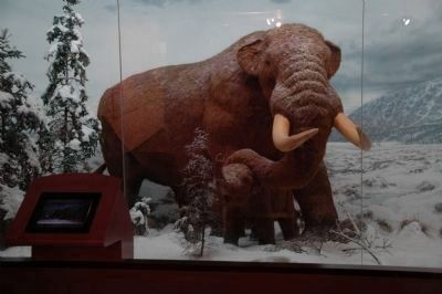 Cohoes Mastodon in New York State Museum 2011 image. Click for full size.