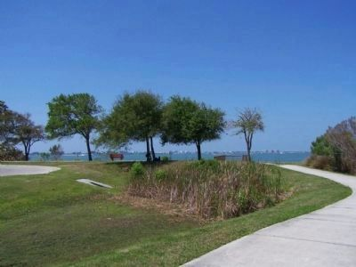 Yellow Bluffs, eastern shore of Sarasota Bay image. Click for full size.