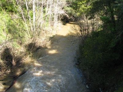 San Francisquito Creek Viewed From the Bridge image. Click for full size.