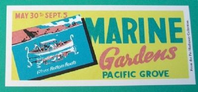 Advertisement on Glass Bottom Boat Marker image. Click for full size.