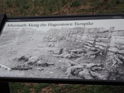 Aftermath Along the Hagerstown Turnpike Marker image. Click for full size.